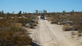 Mojave Road - Waypoint 48: Straight