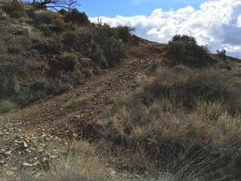 Big Maggie May Trail - Waypoint 4: Old Mine Shaft