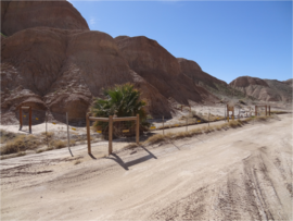 Tectonic Gorge - Ocotillo Wells SVRA - Waypoint 5: An Oasis for Life