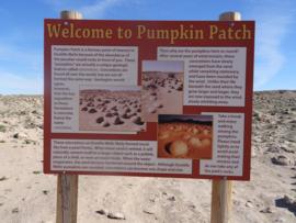 Pumpkin Patch Trail - Ocotillo Wells SVRA - Waypoint 10: Pumpkin Patch Displays