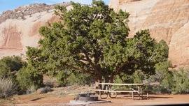 Camping & Lodging: Top of the World - Utah - Cisco, Utah