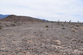 Camping & Lodging: Alamo Road - Las Vegas, Nevada