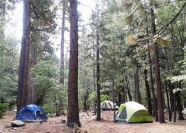 Camping & Lodging: 3N10 – John Bull - Big Bear City, California
