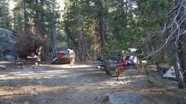 Camping & Lodging: Dusy-Ershim  Trail - Shaver Lake, California