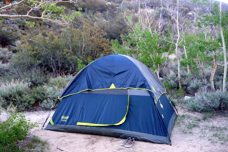 Camping and Lodging