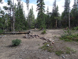 Camping & Lodging: Brown's Pass  - Fairplay, Colorado
