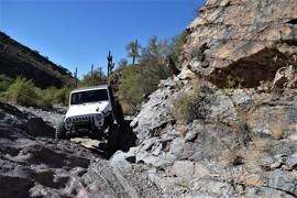 Woodpecker Trail Arizona - Florence, Arizona