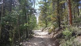 Bard Creek - Empire, Colorado