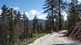 3N12 - Delamar Mountain Road - Big Bear Lake, California