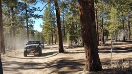 3N16 - Holcomb Valley - Big Bear Lake, California