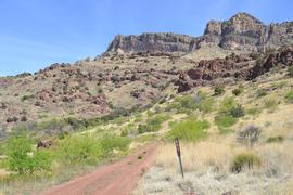 Highlights: Jackson Cabin/Muleshoe Ranch Road FR #691, Arizona - Willcox, Arizona
