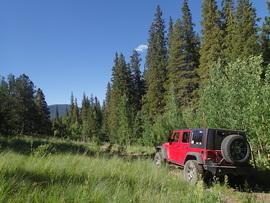 Miller Creek - Empire, Colorado