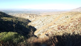 4S10 - East Indian Creek  - Idyllwild-Pine Cove, California