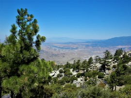 4S01 - Black Mountain - Idyllwild-Pine Cove, California