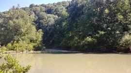 West Fork Illinois Bayou Access - Hector, Arkansas