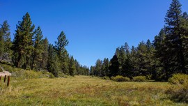 2N93 Wildhorse Meadow - Big Bear City, California