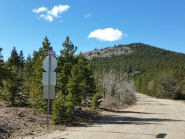 Bald Mountain Lane - Arapaho National Forest  - Central City, Colorado
