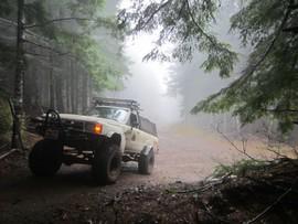 7 Up (Easy Way)  / Tillamook State Forest - Banks, Oregon