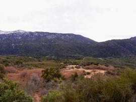 1N64 - Seven Pines - Redlands, California