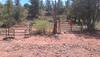Trip Report: Oak Creek Homestead - Cottonwood, Arizona