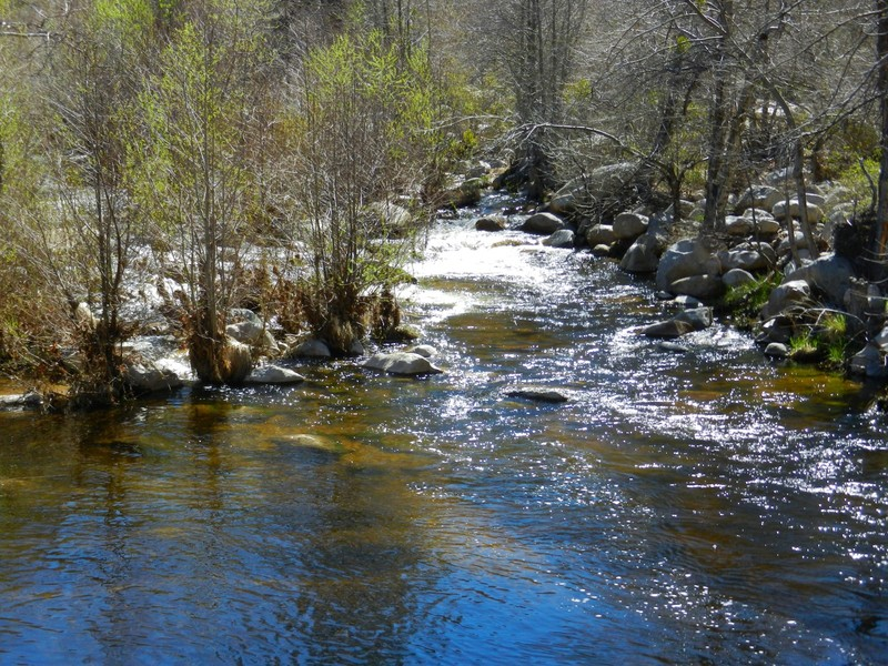 5 Reasons to Explore Arrowhead Lake - Outdoor Project  |Devils Hole Arrowhead