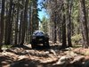 Trip Report: Red Elephant Hill - Downieville-Lawson-Dumont, Colorado