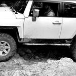 Trail 51 rear flex